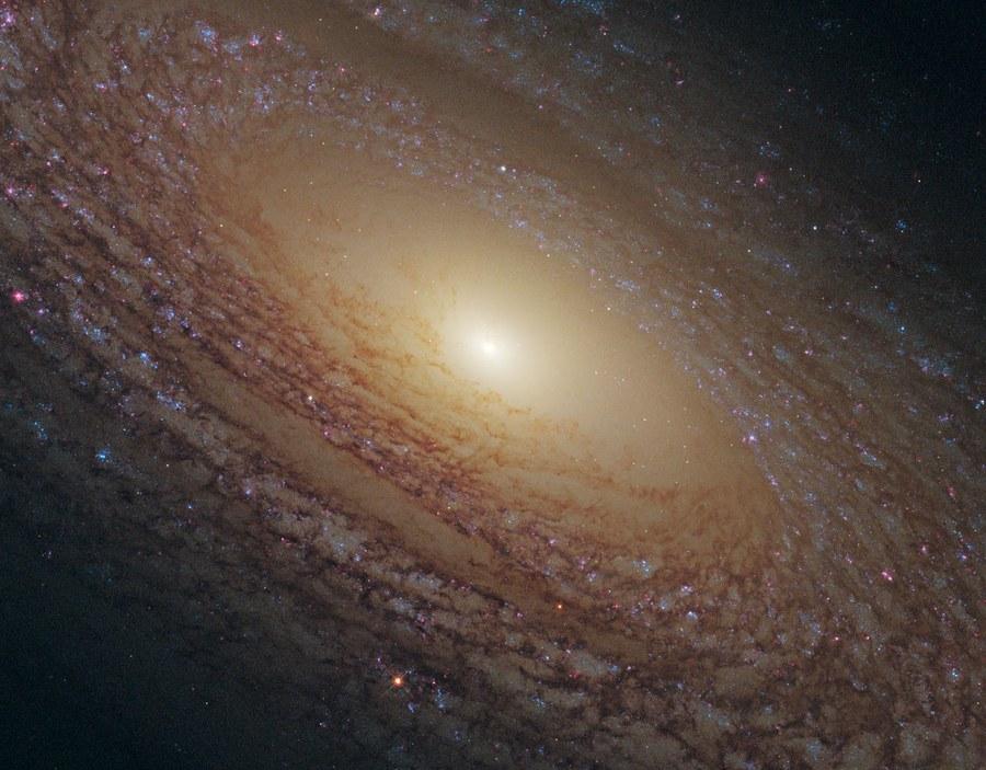 Flocculent Spiral Хлопьевидная Спиральная (flocculent spiral) Галактика  NGC 2841